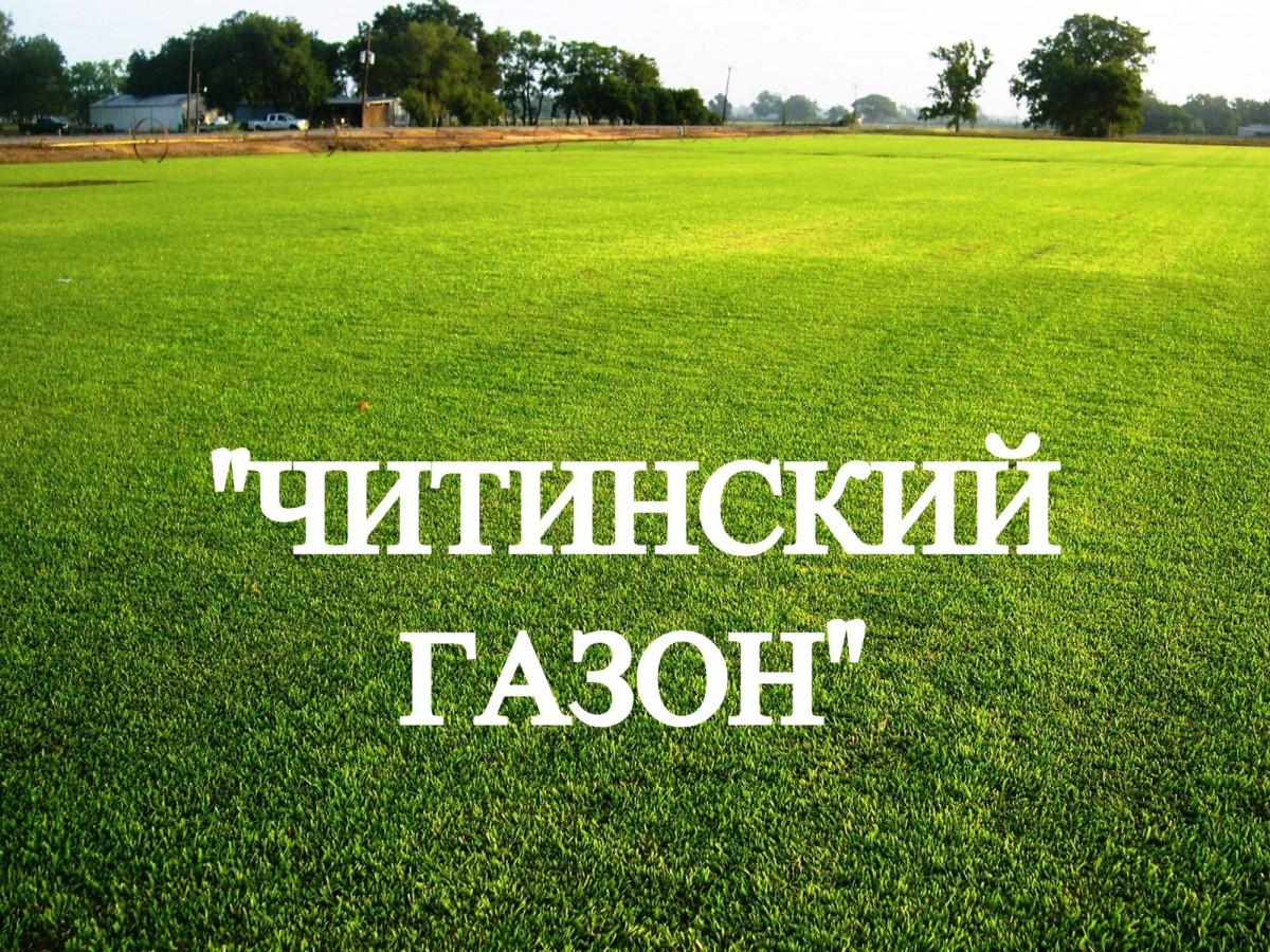 """Газонная трава, травосмесь """"Читинский газон"""" 8 кг"""