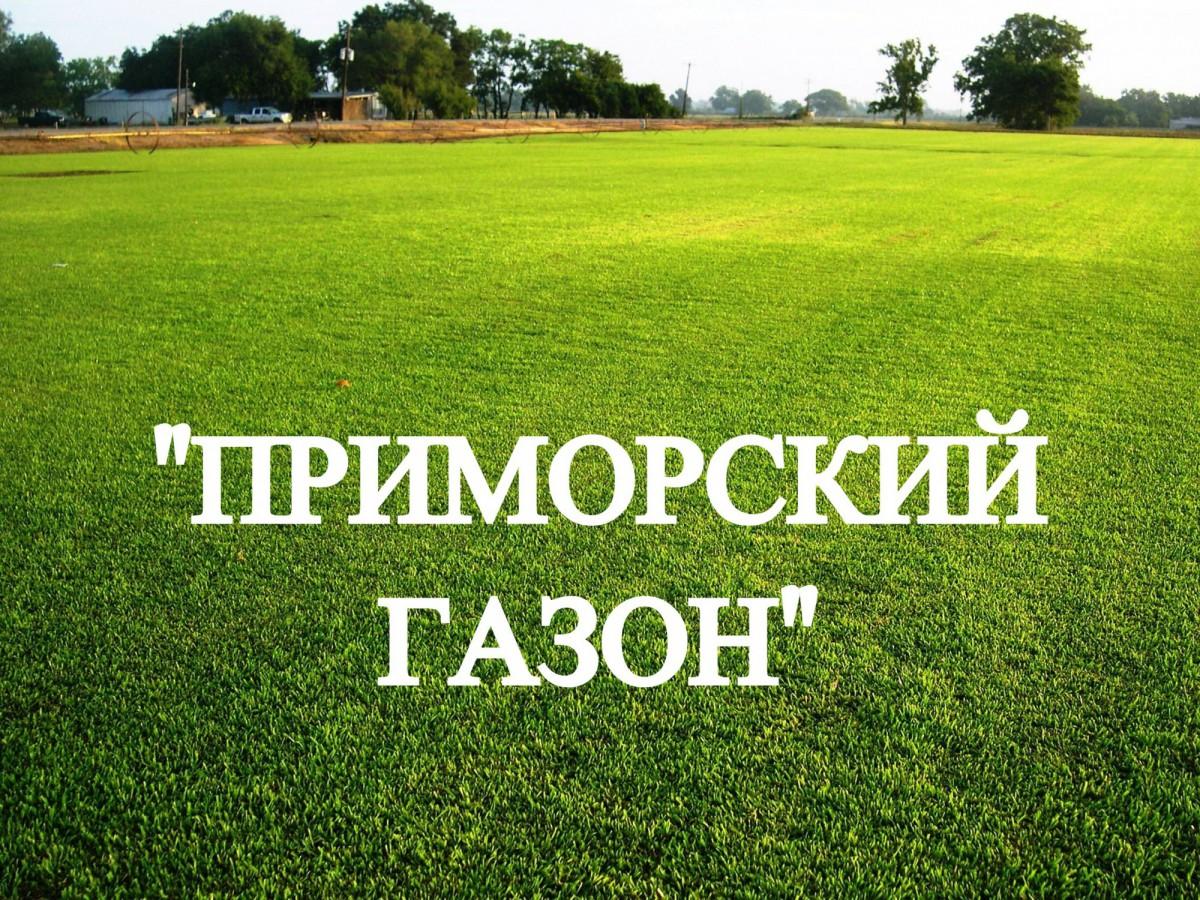 """Газон, травосмесь """"Приморский газон"""""""